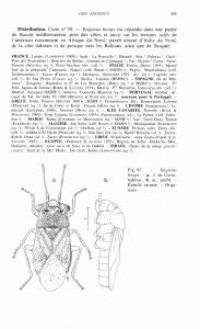 Illustration d'une fiche d'espèce : partie 3